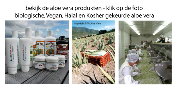 Ecolife Aloe vera Huid Gel Drank Juice